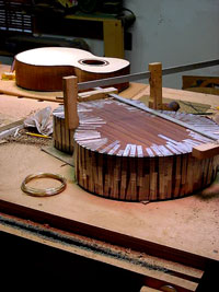 fine art of guitar building